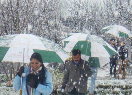 Snowfall in srinagar and shimla