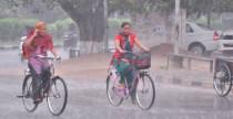 Punjab haryana rain