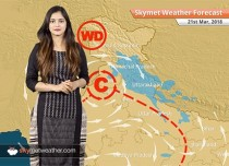 Weather Forecast for Mar 21: Rain in Punjab, Haryana, Rajasthan, thunderstorm in Delhi