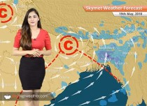 Weather Forecast for May 19: Rain in Kerala, Karnataka, dust storm in Delhi, Haryana