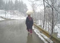 Rain in Jammu and Kashmir - DailyHunt 429