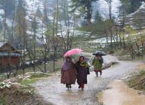 Rain in Kashmir and Himachal
