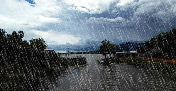 Kerala rains article