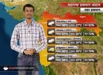 Maharashtra Weather Forecast for Jun 8: Good rains lash Maharashtra; More showers ahead