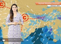 Weather Forecast for June 23: Rain in MP, Chhattisgarh, Maharashtra; dust storm in Punjab, Haryana