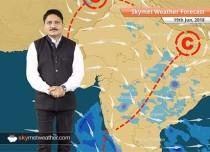 Weather Forecast for June 19: Thunderstorm in Punjab, Haryana; Hot in Rajasthan, Gujarat
