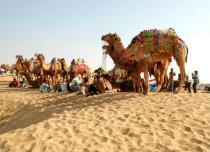 Rajasthan_Rajasthan-tourism-department-4291