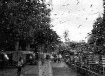 Mumbai Rains, Rain in Mumbai, Weather in Mumbai, Mumbai Weather, Mumbai Rains Update, Mumbai Rains News, Mumbai Rains, Monsoon in Mumbai, Mumbai Monsoon, Mumbai Rains Today, Mumbai Rains Latest, Mumbai Rains Update, Mumbai Rains News, Monsoon in Mumbai, Mumbai Monsoon 2018