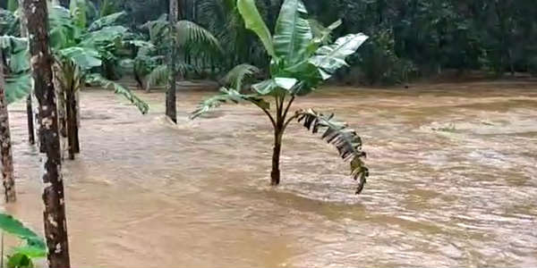 Kerala Floods: Situation worsens as reservoirs continue to swell