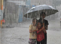 Rain in Madhya Pradesh (3)