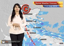 Weather Forecast for August 21: Rain in Madhya Pradesh, Maharashtra, Himachal, Kashmir