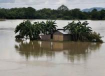 assam flood-429