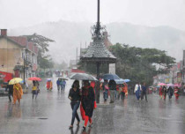 Rain in Dharmshala and Himachal--TribuneIndia 429