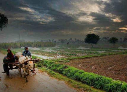 Rain in MadhyaPradesh