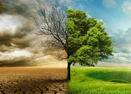 Climate Change and Global Warming--theworshipinitiative 600