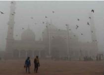 Delhi Pollution FI