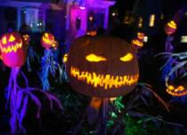 Halloween US Fea