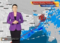 Weather Forecast for Oct 14: Weather System to bring back rains in Kerala, AP, and Tamil Nadu