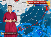 Weather Forecast for Oct 24: Rain in Kerala, Tamil Nadu; dry weather in Central and North India