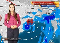 Weather Forecast for Oct 11: Heavy rains ahead for North coastal Andhra Pradesh, Coastal Odisha and Gangetic West Bengal