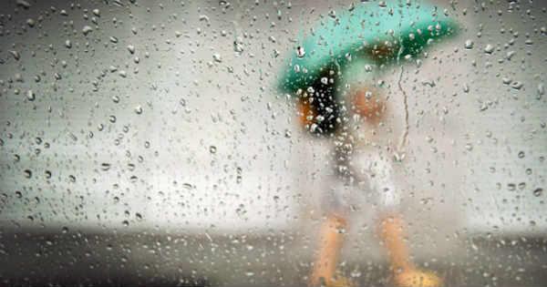 Rain Article
