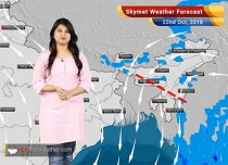 Weather Forecast for Oct 22: Rain in South India, dry weather in Delhi, Haryana, Rajasthan