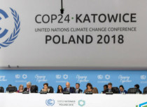 Climate summit in Poland in-News UN 429