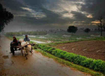 Punjab-in-rain featured
