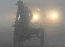 fog in up featured