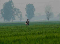 punjab winters featured