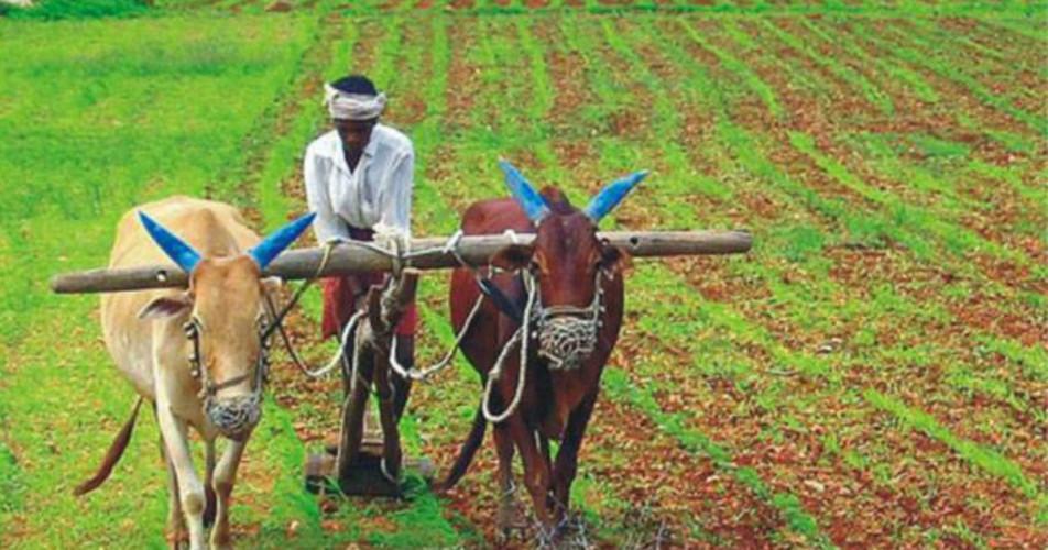 Rural income