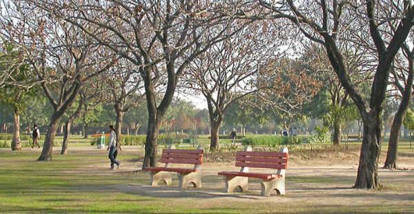 Chandigarh Weather_Trekearth 600