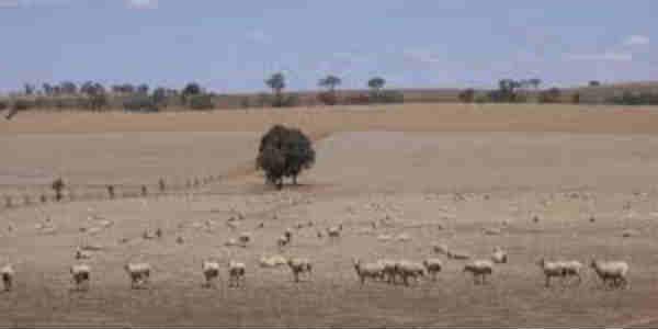 East Australia drought web