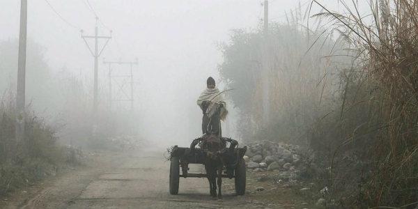 Fog India 1