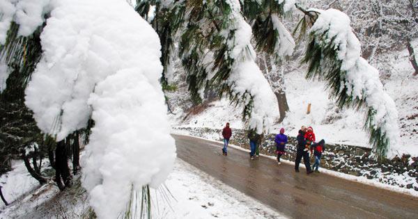 Gulmarg-Snowfall-600