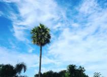 Hyderabad Weather 2