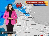 Weather Forecast for Jan 30: Punjab, Haryana, UP, Rajasthan to get rid of Cold Wave conditions soon