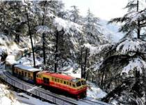 Snow in Shimla
