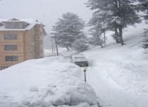Snowfall in Srinagar-Jagran 429