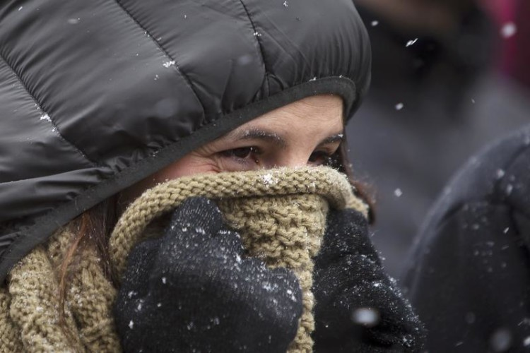 A woman holds a scarf over her face to keep warm as she waits in line outside the Westminster Kennel Club Dog Show in Manhattan