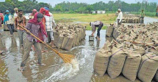 Haryana and Punjab Rains--The Hindu  600