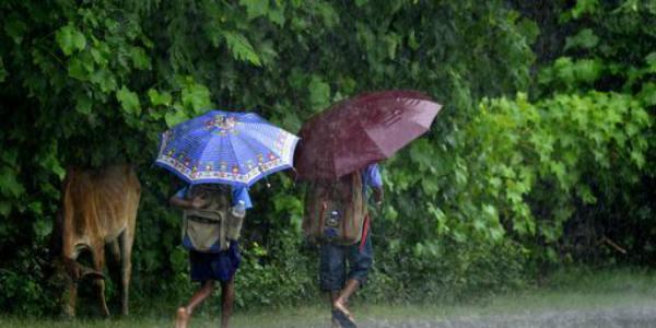Nagaland rains