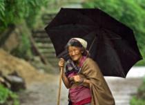 Rain in Nagaland