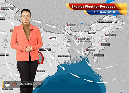 Weather Forecast Feb 2: Isolated light rain, snow over Gulmarg, Sonmarg, Uttarkashi