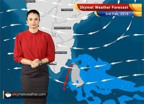 Weather Forecast Feb 3: Dense fog to cover parts of Solan, Rishikesh, Hisar, Delhi, Bareilly