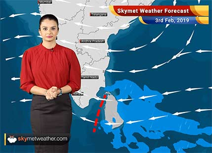 Weather Forecast Feb 3: Dense fog to cover parts of Solan, Rishikesh, Hisar, Delhi, Bareilly