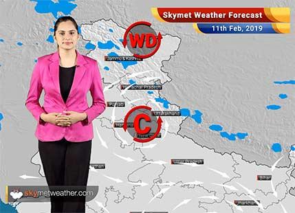 Weather Forecast Feb 11: Rain in Kashmir, Himachal, Uttarakhand, Tamil Nadu, Karnataka likely