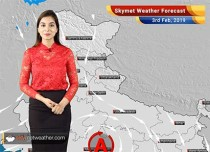 Weather Forecast for Feb 3: Dense fog over Shimla, Chandigarh, Dehradun, Ambala and Delhi