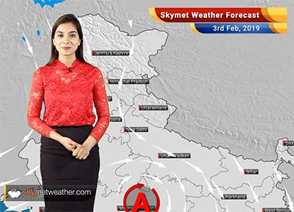 Weather Forecast for Feb 3: Dense fog over Shimla, Chandigarh, Dehradun, Ambala and Delhi