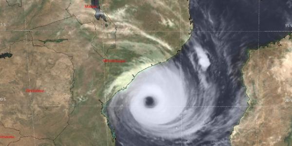 Cyclone web